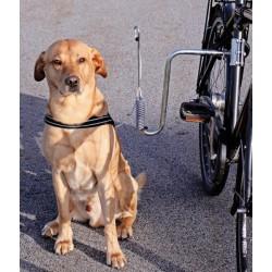 Stabilt sykkelfeste til hund