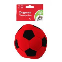 Fotball for vannlek