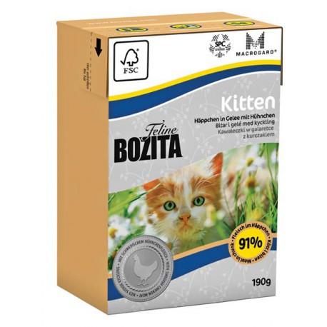 Feline Kitten