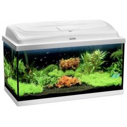 Aquarium 60 Classic