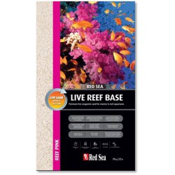 Live Reef Base Pink