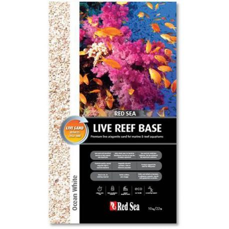 Live Reef Base White