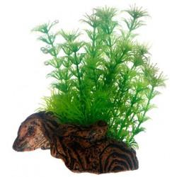 Flora Root 3 S 17cm