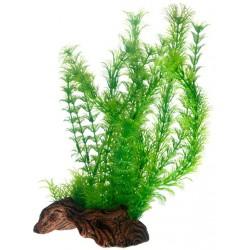 Flora Root 3 L 30cm