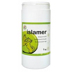 Islamer sjøalger