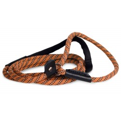 Retriever Leash Active