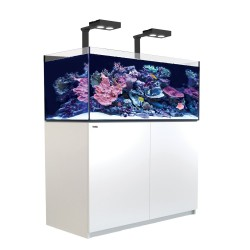 Reefer Deluxe XL 425