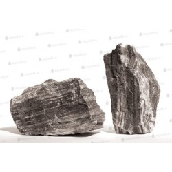 Zebra stone 5st