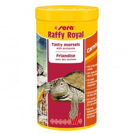 Sera Raffy Royal