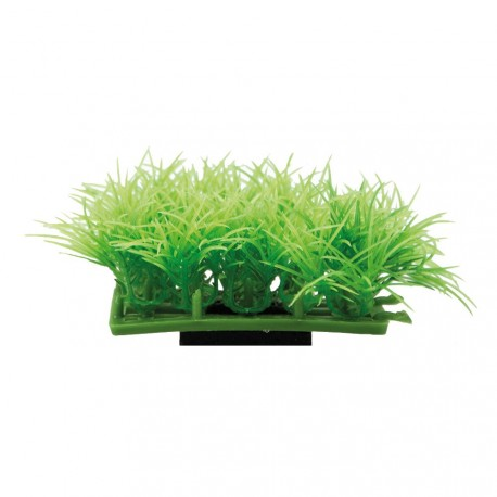 Plant pad 2
