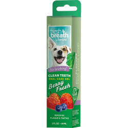 Oral Care Gel Berry Fresh