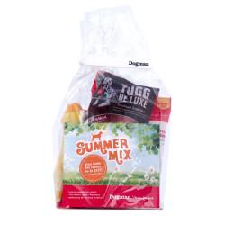 Summer Mix Hund Sommar 2017