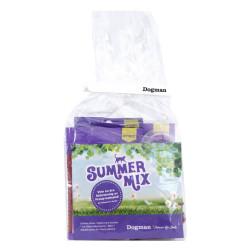 Summer Mix Katt Sommar 2017
