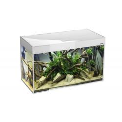 Akvarium Glossy 80cm