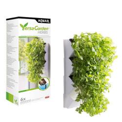 Versa Garden Herbs