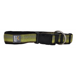 Dog Collar Adjustable Active