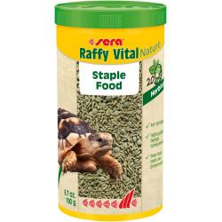 Raffy Vital Nature