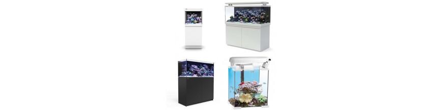 Akvarieset saltvann