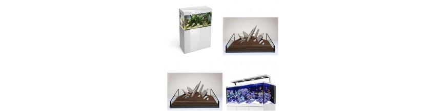 Akvaristik-Reptil